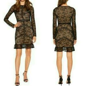 NWOT Bardot Sasha Lace Sheath Dress Black Large